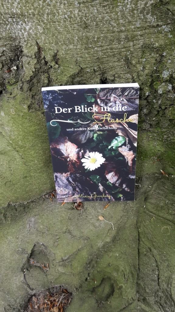 Roman Der Blick in die Flasche von Marie Grünberg
